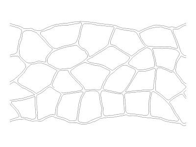 Stencil Pattern - Bushrock