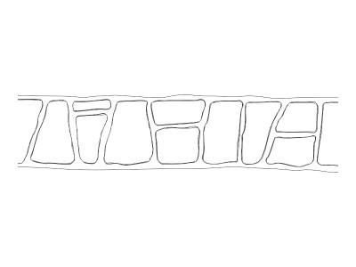 Stencil Pattern - Keystone Header